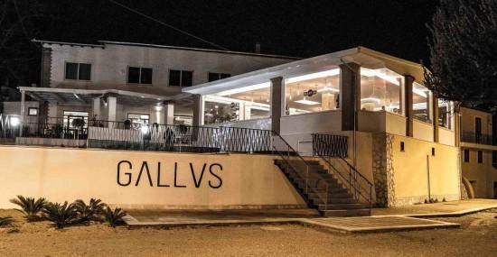 Gallus Gourmet