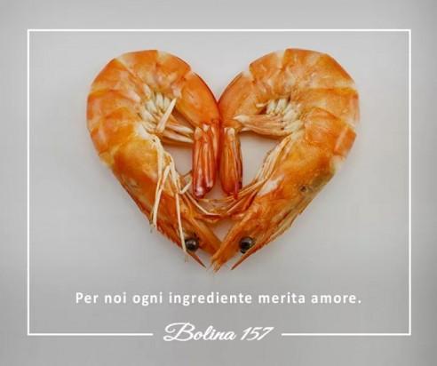Bolina 157